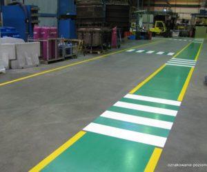 Oznakowanie poziome - Przejścia dla pieszych, droga dla pieszych