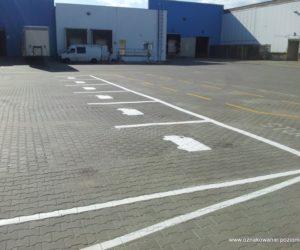 Oznakowanie poziome - parkingi, droga dla wózków